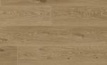 NO.6003-棕橡