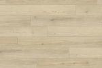 1663 托爾斯淺橡 Torshavn Light Oak