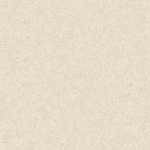 6642花崗岩-白White Andesite