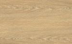 0023 威尼斯橡木 Venice Oak