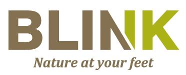 proimages/logo/blink.png