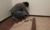步驟07舖設實木地板2