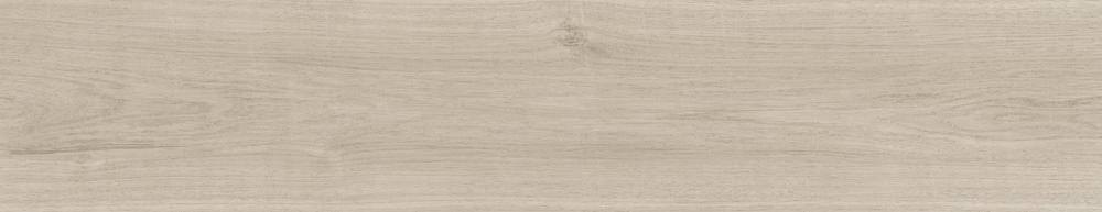 3330 白楓木 White Maple