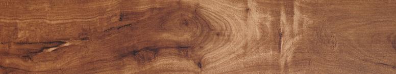 NO.151 英格蘭楓木 England Maple