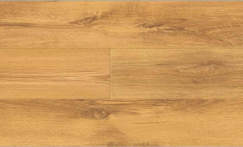 NO.H506.薩特橡木/Sutter Oak